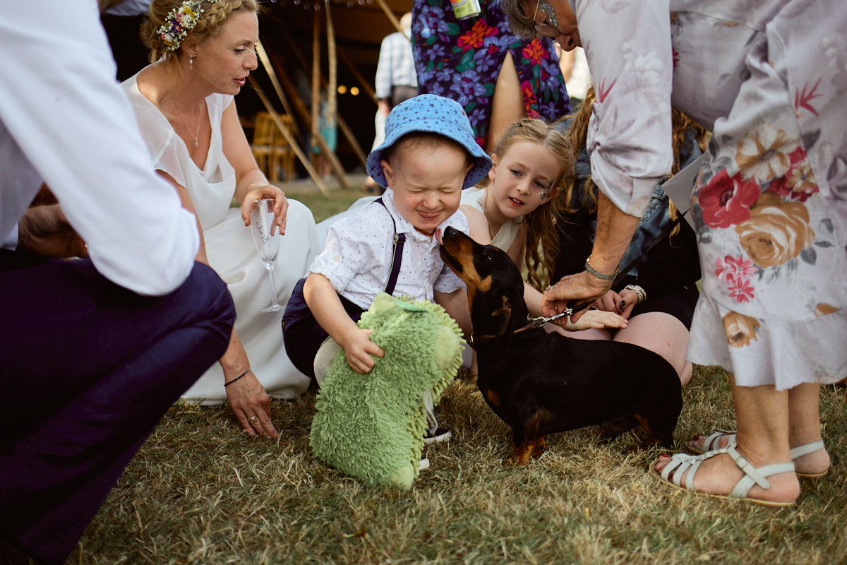 Funny wedding photo of a boy being licked by a dachshund watched by the bride