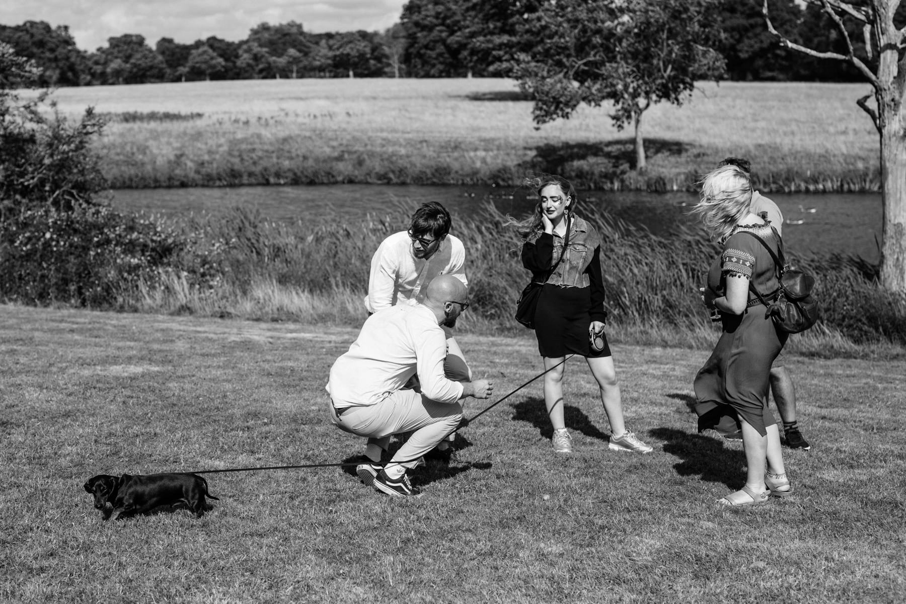 Funny wedding photo of a dog on a lead